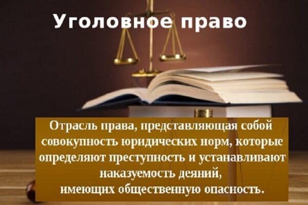 Научная статья: уголовное право