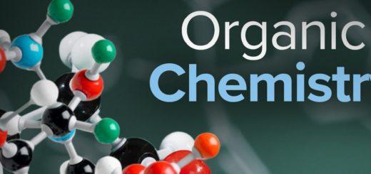Заказать реферат по органической химии